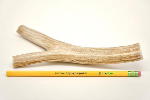 "Deer Antler 7"" - 9"" Large"